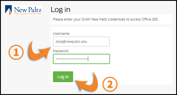 Email and password entry screen